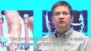 Prof.dr. Floris Lafeber, hoogleraar Experimentele reumatologie