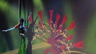 www.laquebaila.com  SILVESTRE