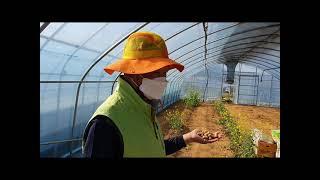 사회적농업  제18차4월14일