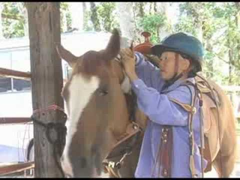 Benton Co Horse Fair 2008 - Fine Equine