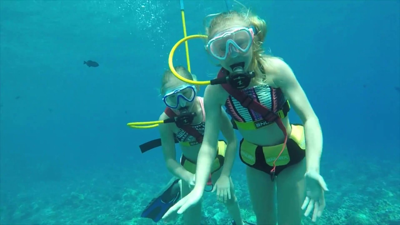 Snorkeling Tour & Dolphin Encounters | Quicksilver