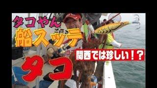 タコやん船スッテでタコを狙う!in 兵庫県明石沖(865)
