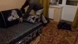 Мягкая мебель в Новом Ступино.(Огромный выбор мягкой мебели по каталогам.8-925-303-40-76., 2015-10-31T19:37:39.000Z)