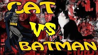 Бэтмен против Кота. Нереальная битва.