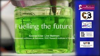 Innovative and durable materials for fuel cells | Live Mølmen and Konrad Eiler