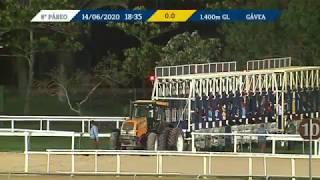 Vidéo de la course PMU PRIX GRIMALDI