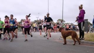 BMW Melbourne at the Melbourne Marathon