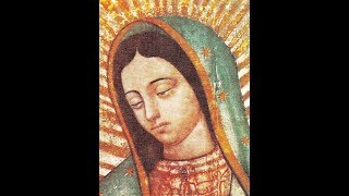 Pray The Rosary, The Joyful Mysteries, Monday And Saturday, No Music, No Ads, HD