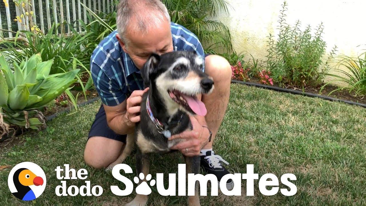This Dog's Dad Got His Last Wish | The Dodo Soulmates