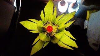 Звезда из киви! Star of kiwi! Украшения из фруктов! Decoration of fruits!