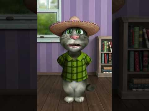 Gato tom melco chistes en quechua.
