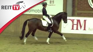 dressurreiten lernen das pferd an die hand reiten klaus balkenhol die alten meister teil 1f