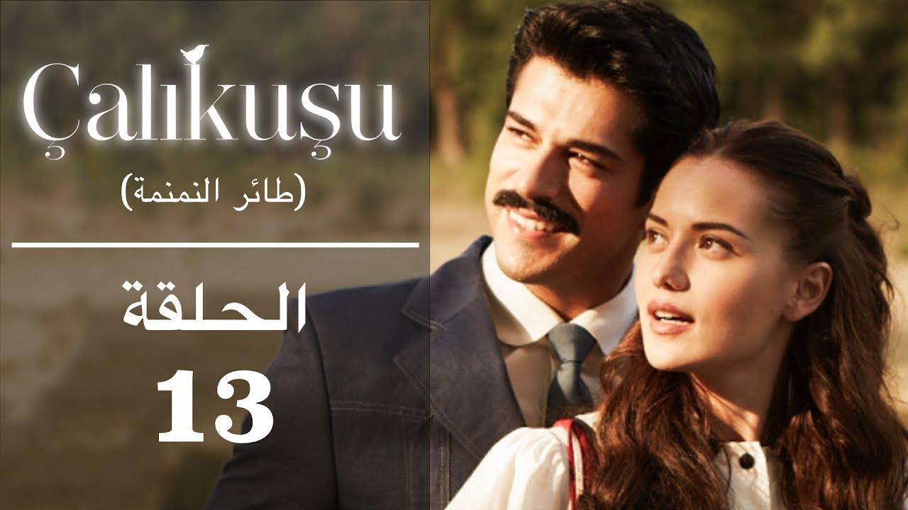 طائر النمنمة الحلقة 13 مترجمة للعربية Youtube