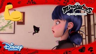 Mucize: Uğur Böceği ile Kara Kedi | Dünyanın En Güçlü Kwamisi Plagg 💪 | Disney Channel TR
