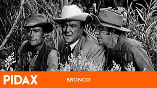 Pidax - Bronco (1958 - 1962, TV-Serie)