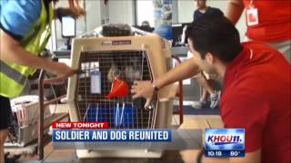 Military Dog Reunions, War Dog Reunions, Military Working Dogs