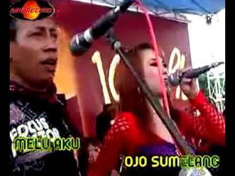 NGAMEN 5-sagita with eny sagita di goyang hot