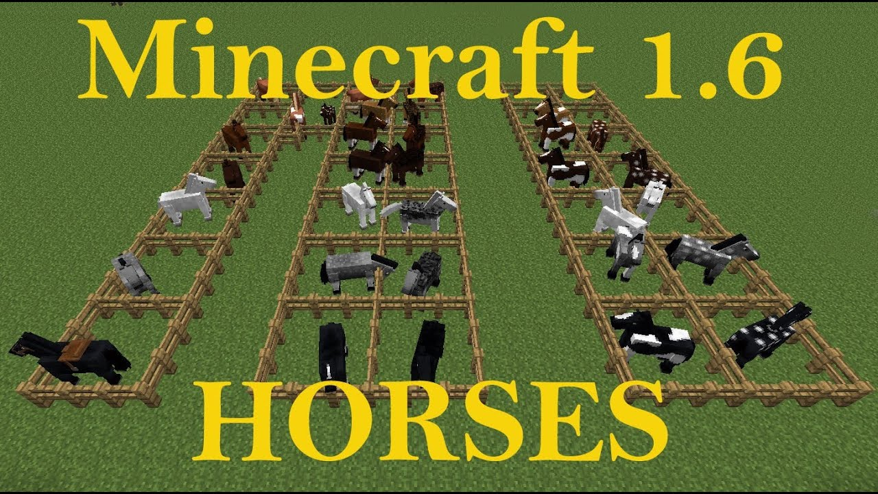 Minecraft 1.6 Horse colors and breeds tutorial - YouTube