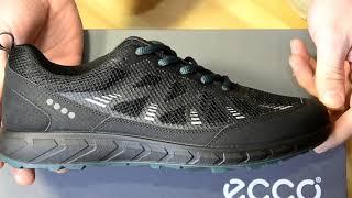 Обзор кроссовок ECCO TERRATRAIL