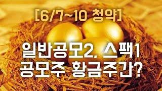 [공모주] 라온테크 삼…