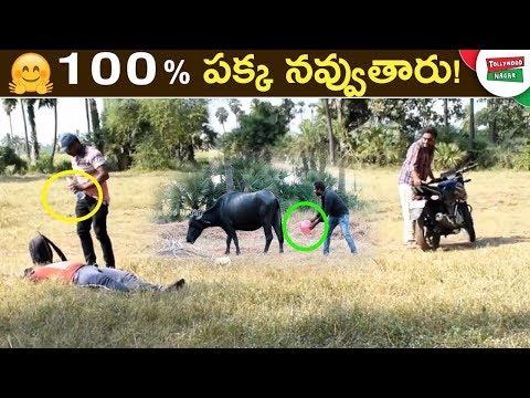 Latest Funny Videos in Telugu | BEST Funny Video | Telugu Best Comedy Scenes | Tollywood Nagar