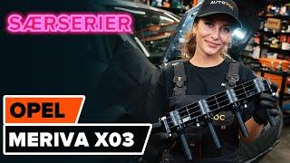 Hvordan skifte Tennplugger på FORD S-MAX - videoguide