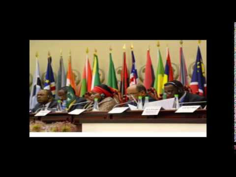 25th Ordinary Session of the Executive Council in Malabo