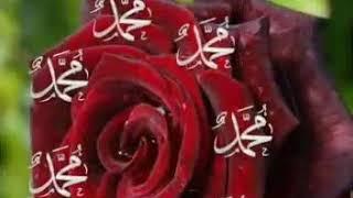 ALLAH bir'dir💜