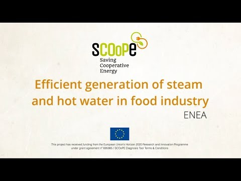 SCOoPE 09 - Efficient generation of steam and hot water in food industry