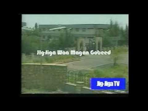 jigjiga TV news