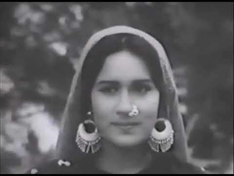 сайха 1956 индия