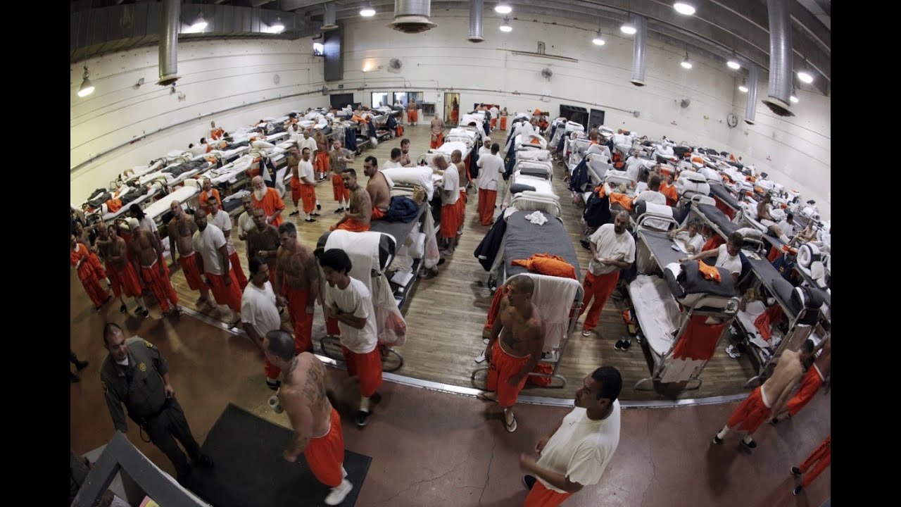 prison overcrowding The main source of data for annual prisoner counts is the national prisoner statistics (nps), begun in 1926 under a mandate from congress to collect statistics on.