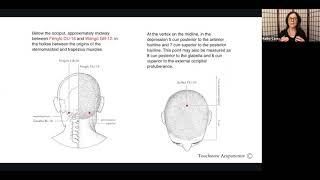 Acupressure for Anxiety, Stress & Insomnia - Kathy Casey DACM, L.Ac., Dipl. OM, CHt.