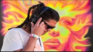 DJ Shane Gobi Boom Festival 2012 Set