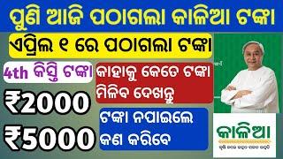 kalia yojana 4th phase money transfer today 2021 | kalia yojana | kalia yojana  money 2021 | odisha