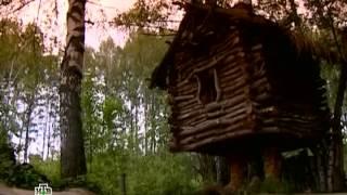 Таинственная Россия: Костромская область. Следы лесной нечисти?