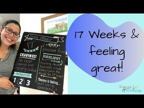 17 WEEK PREGNANCY UPDATE // Progesterone levels, pregnancy congestion, & postpartum prep