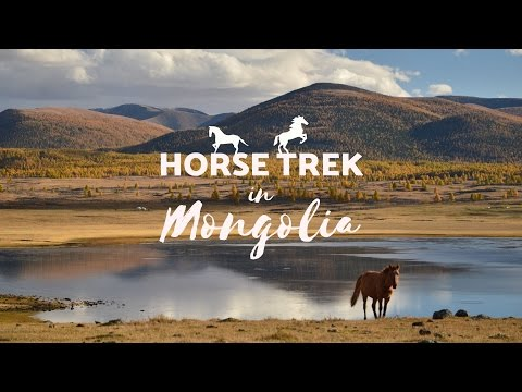 Horse Trek in Mongolia | 4 day tour