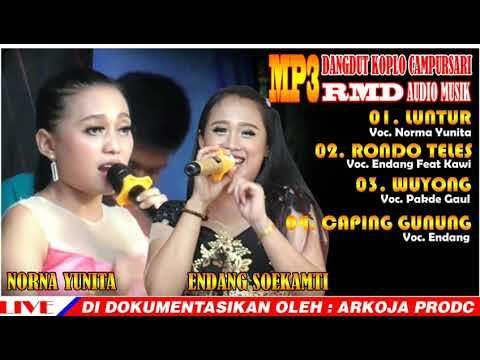 full-album-mp3-koplo-campursari-/-luntur-/-rondo-teles-/-wuyong-/-caping-gunung-/-norma-&-endang
