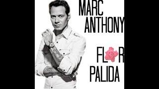 Marc anthony Flor palida letra original