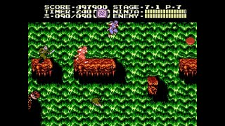 [TAS] NES Ninja Gaiden II: The Dark Sword of Chaos by xipo, Scumtron & Samsara in 09:12.17