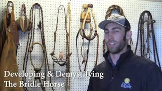 The Bridle Horse: Developing & Demystifying