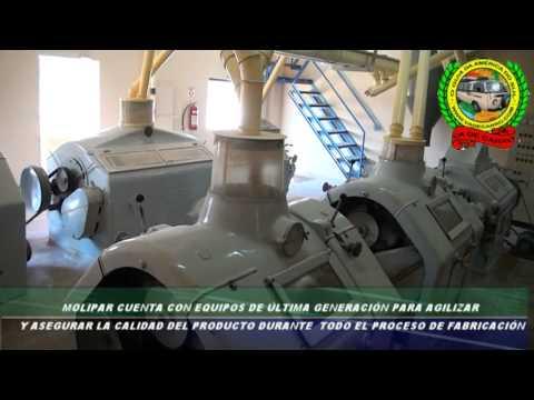 Molinos del Paraguay Molipar Harina y Afrecho de Trigo Dr. Juan Eulogio Estigarribía