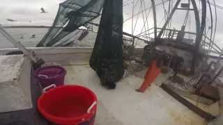 Commercial Shrimping May River, South Carolina drag netting GOPR0