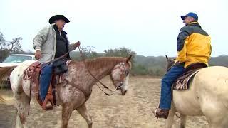 Texas Outdoors: Cross G Ranch Trail Rides