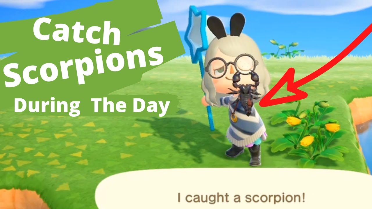 How To Make Scorpion Island During The Day Animal Crossing New
