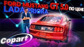 Чёрная пятница на Copart, купил Mustang GT 2016 и Durango 2020 без колеса. Автосервис в Майами# 14