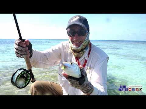 SPORTFISH Hosted A Saltwater Fly Fishing Trip To Los Roques Venezuela