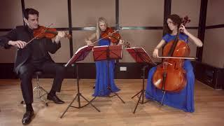 Game Of Throne (Theme) String Trio Wedding Music