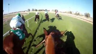 "Jockey Cam: Turf Paradise Let's You ""Ride the Race"" in HD (unedited)"